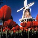 2 Plazas para una Formacion en Holanda
