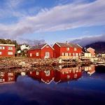 Trabajo en Noruega para mécanicos de motos