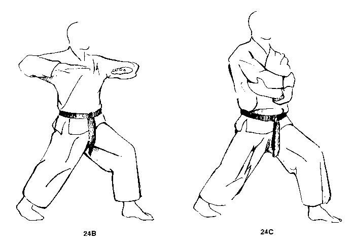 karate76_book.html of Lester Ingber's Archive