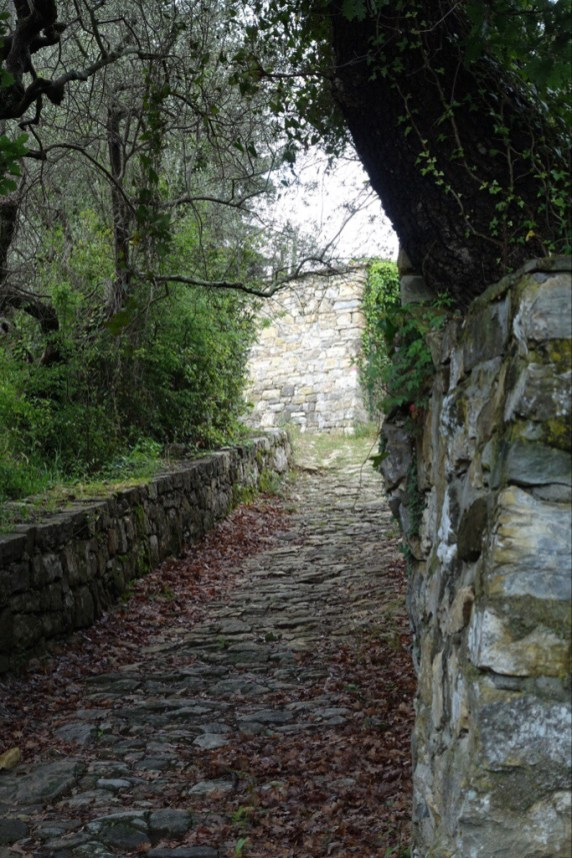 Old stone-paved path