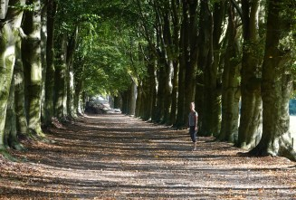 A country lane near Maastricht.
