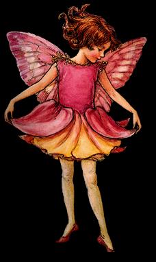 Ingeborg van Zuiden flower fairies