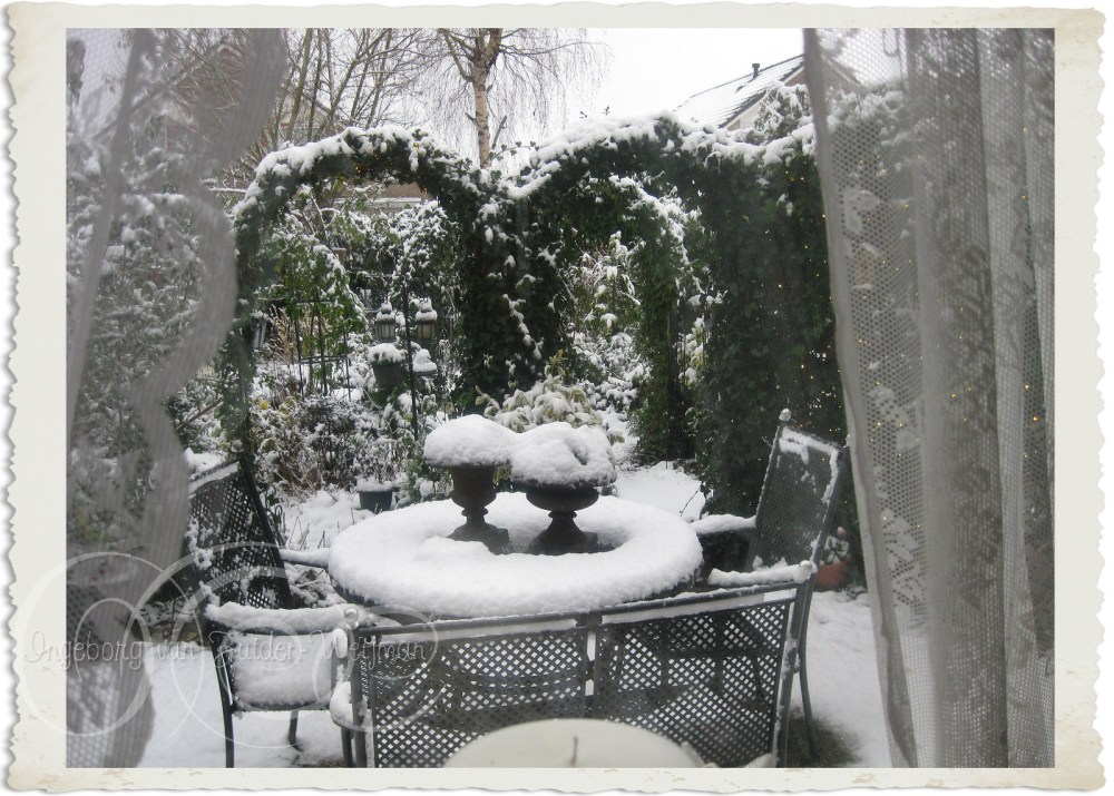 Snow in my garden