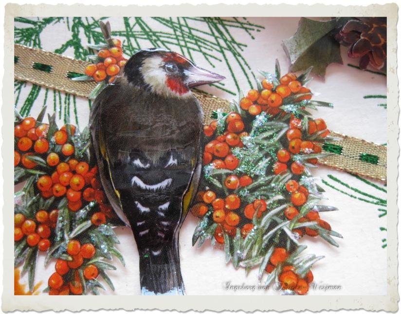 Woodpecker bird and berries