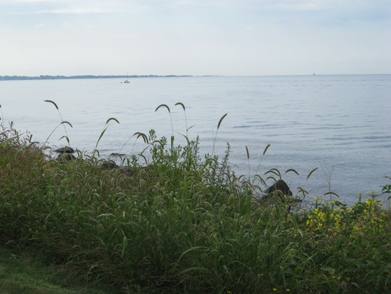 8.26.11 ~ Avery Point