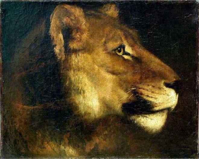 """Head of Lioness"" by Theodore Gericault"