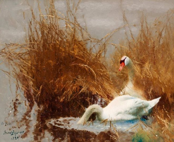 """Swans at the Shore"" by Bruno Liljefors"
