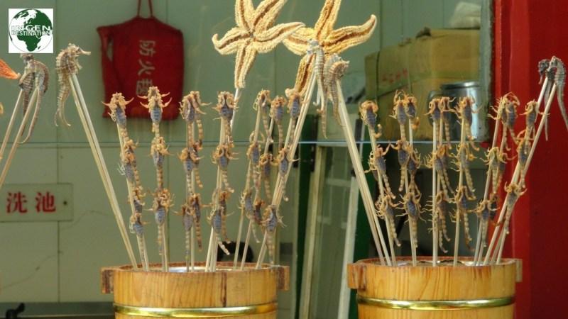 Små levende skorpioner på spyd, som friteres i 10 sekunder ved bestilling. Der er også søheste og søstjerner.