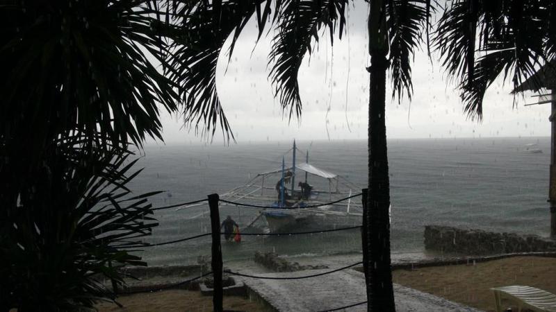 filippinerne, moalboal, backpacking, dykning, sardiner