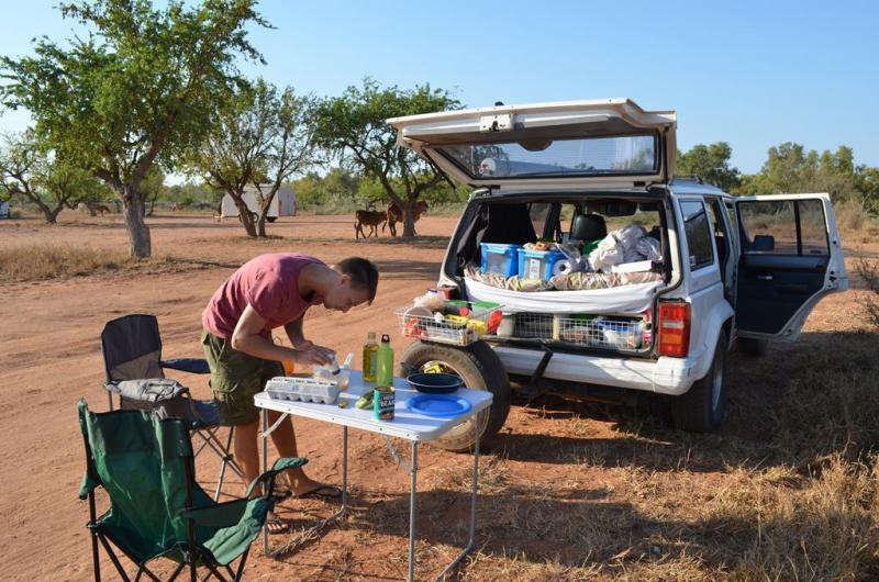 Morgenmad med vilde kvæg i baggrunden.
