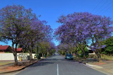 Australien, adelaide