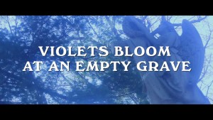 VIOLETS BLOOM AT AN EMPTY GRAVE 2