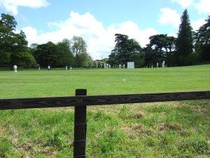 Sunday cricket match at Fonthill Bishop.