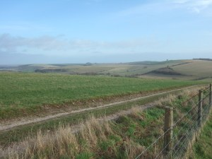 Lovely chalkdownland from Cold Kitchen Hill. The track is the Mid Wilts Way.
