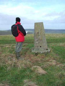 Chap and the drunken trig point on Cold Kitchen Hill.