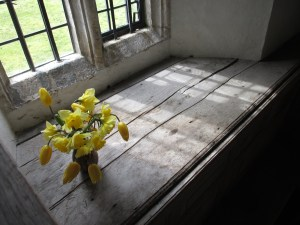 Daffodils and tulips in one of the windows.