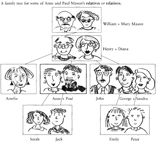 Vocabulary The family tree