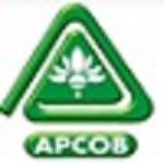 APCOB Recruitment 2019 Staff Assistant 54 vacancies