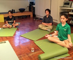 mindful meditation in action