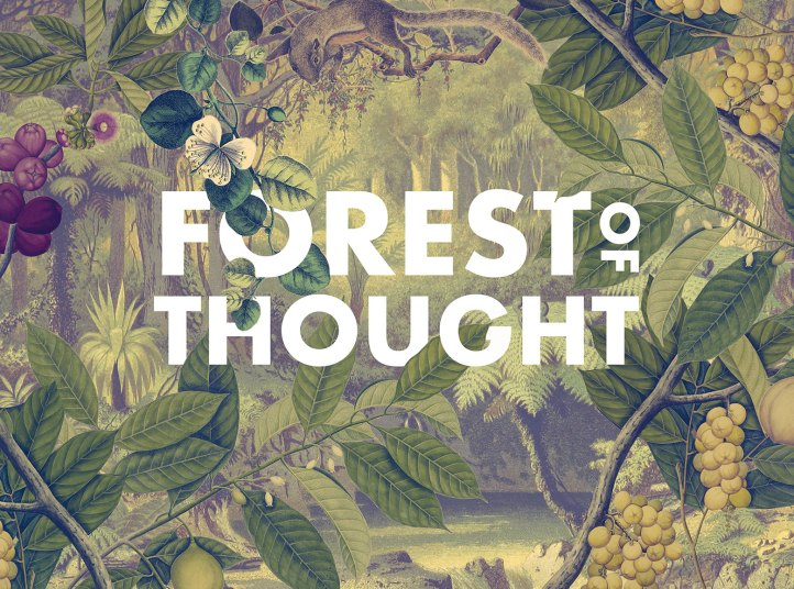 Forest of Thought