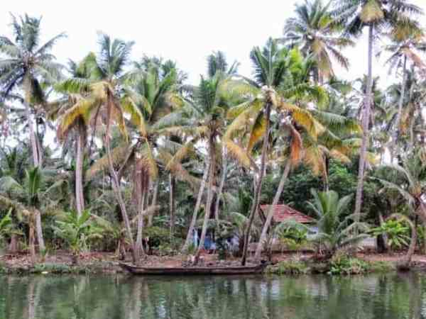 Zen Places – Munroe Island in Kerala