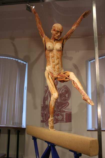 Imagen de una momia del Plastinarium de Guben