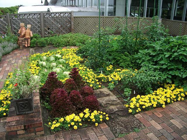 Roof-Garden