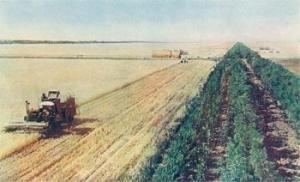 La première opposition à l'agriculture intensive court-termiste était soviétique
