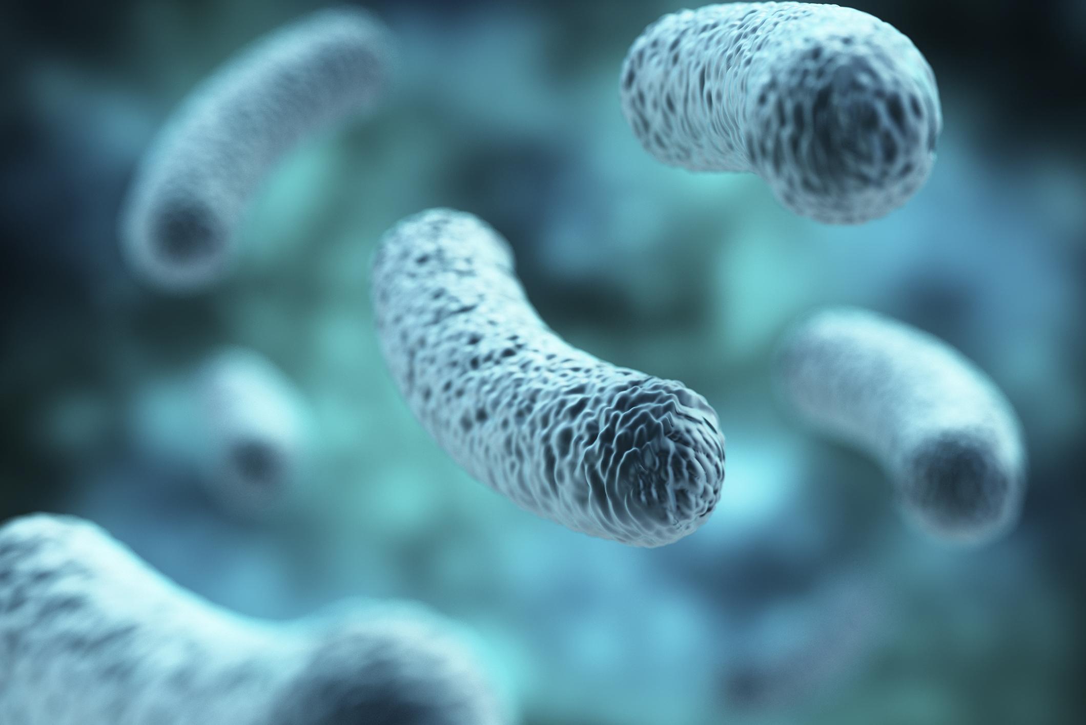 Graceland Legionnaires Disease Outbreak Case Count Grows