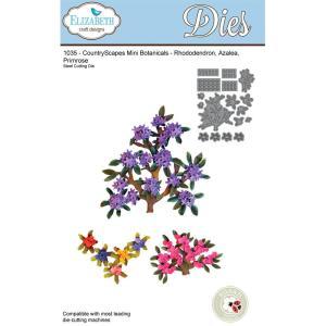 Elizabeth Craft Dies, CountryScapes -Rhododendron, Azalea, Primrose
