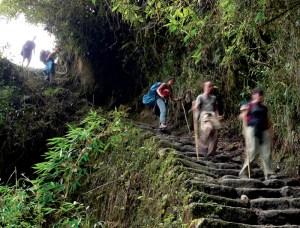 inka trail machu picchu jungle trek 3