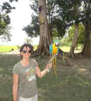 turista con un pappagallo giallo e azzurro
