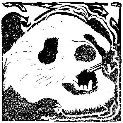 Panda Maze, Created by Yonatan Frimer, Mazes Artist