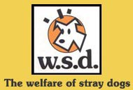 The Welfare of Stray Dogs