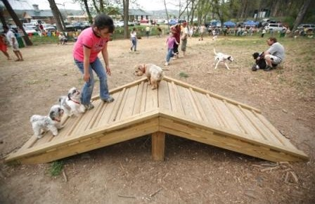 Dog Park in Mumbai