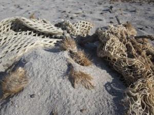 Fishing Nets Trash in Oceans