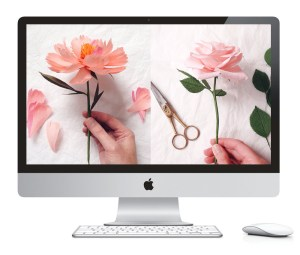 Download free floral wallpaper and read an exclusive interview with Susan Beech of A petal unfolds | Zakkiya Hamza of Inkstruck Studio