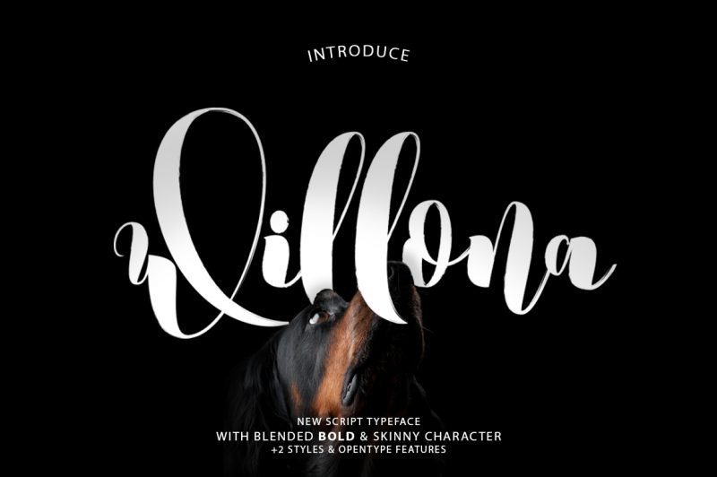 Willona font