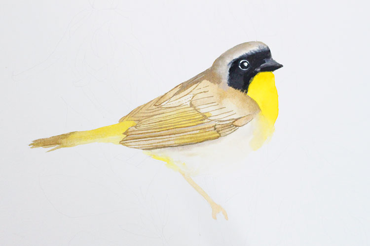 Gouache and Watercolor Bird Painting Tutorial: Adding gouache