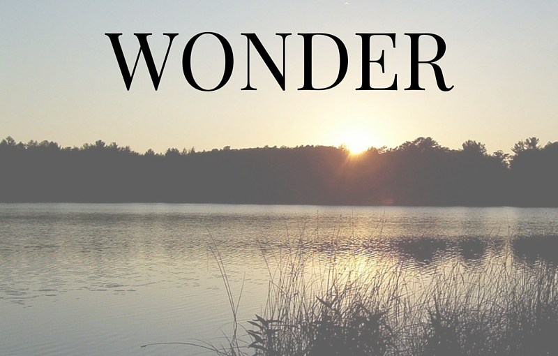 Wonder: The Intersection of Truth & Fiction