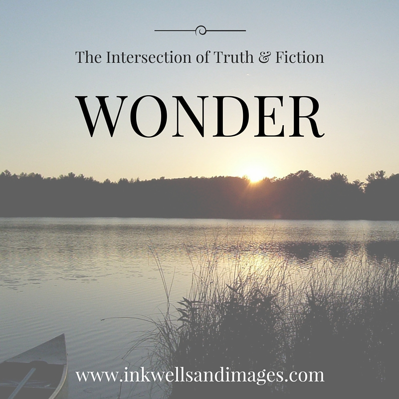 WONDER - The Intersection of Truth and Fiction | Inkwells & Images