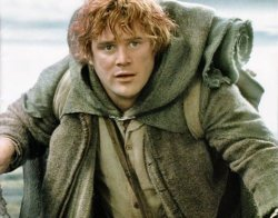 Samwise Gamgee as portrayed by Sean Astin in The Lord of the Rings trilogy