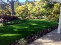 Artificial Grass Carpet Big River, California Landscaping