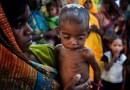 """""""Fastest Growing"""" भारतीय अर्थव्यवस्थेत, रोज कोट्यवधी बालके उपाशी झोपतात"""