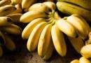 अत्यंत स्फूर्तीदायक फळ – 'केळी' :  आहारावर बोलू काही – भाग ८