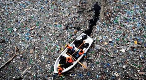 We're sick of plastics, what can we do with it?