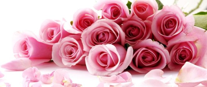 order valentine's day flowers  flower, Beautiful flower
