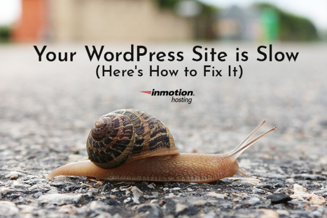 Your WordPress Site is Slow (Here's How to Fix It) | The Official