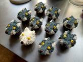 Julie's Direwolf Cupcakes