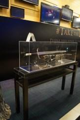 Longclaw on display